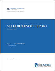 SEI Leadership Report