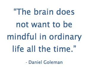 goleman-mindful