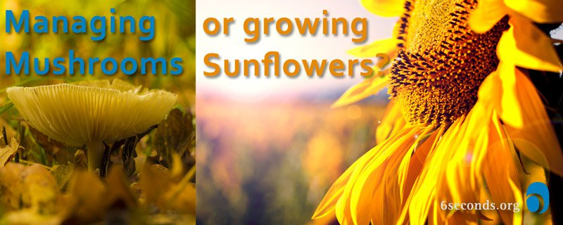 Is Your Leadership About Mushrooms or Sunflowers?