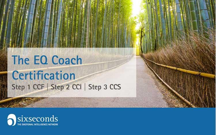 Coach Certification Six Seconds