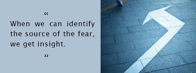 fear-insight