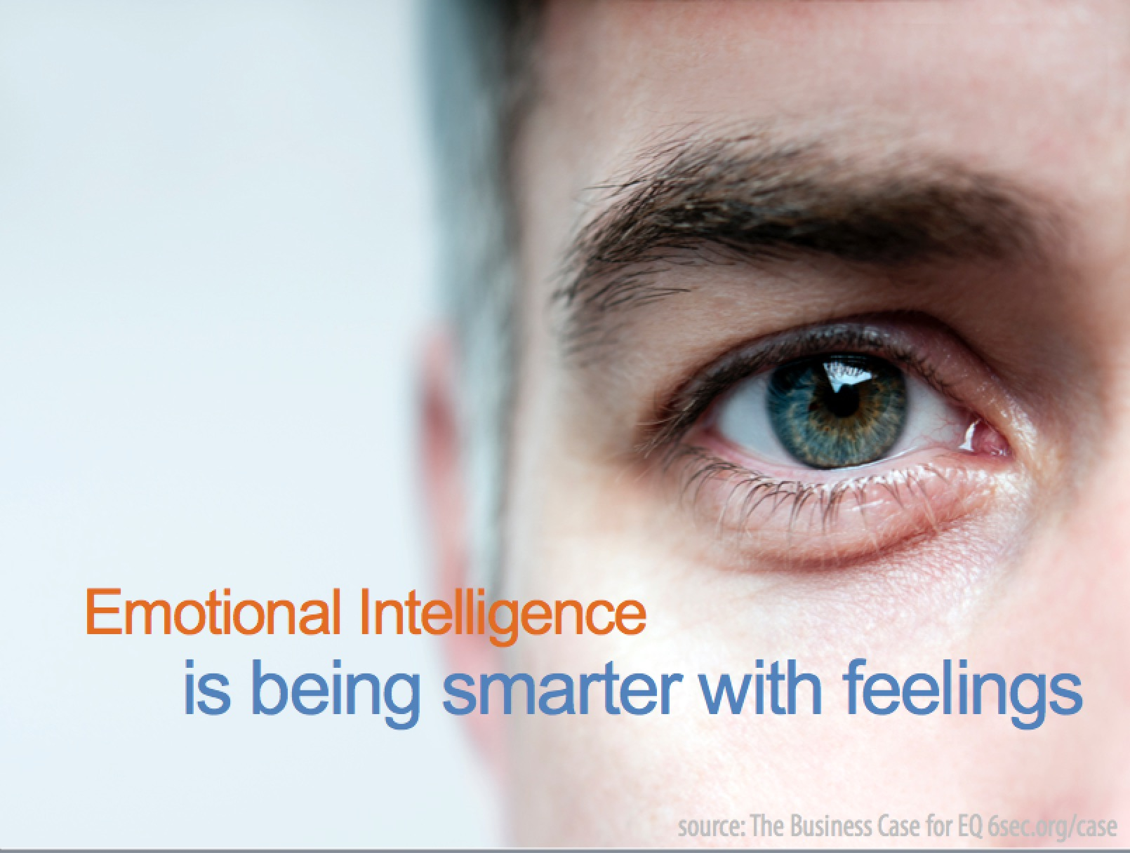 Are You Ready To Put Emotional Intelligence To Work in Your Organization?