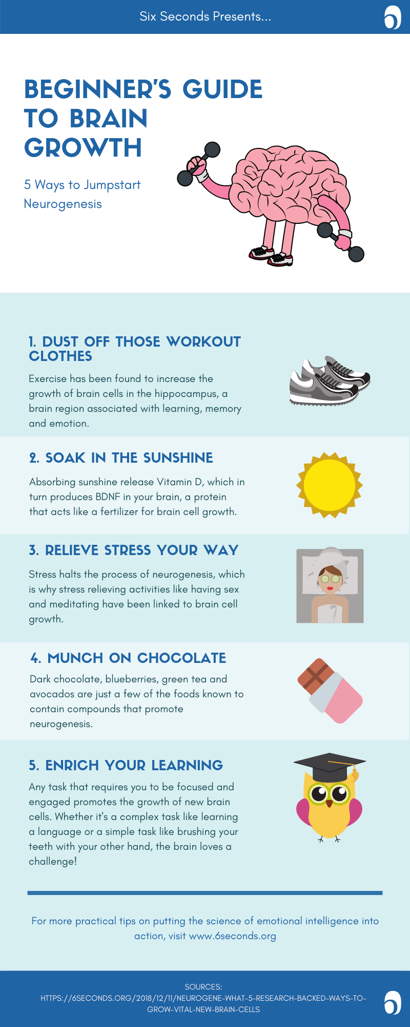 Staying Sharp: 5 Ways to Boost Your Brain Power • Six Seconds